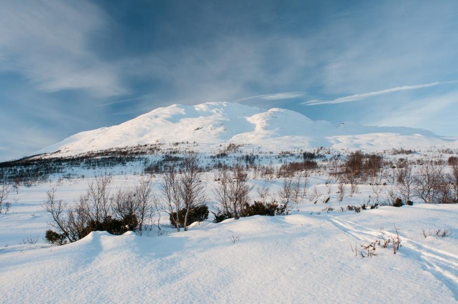 Svartbekkdalen
